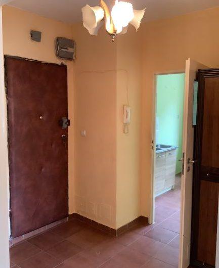 Oferuję przestronne słoneczne dwupokojowe mieszkanie na parterze.